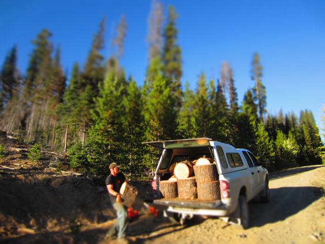Logging 10